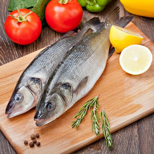 balık3